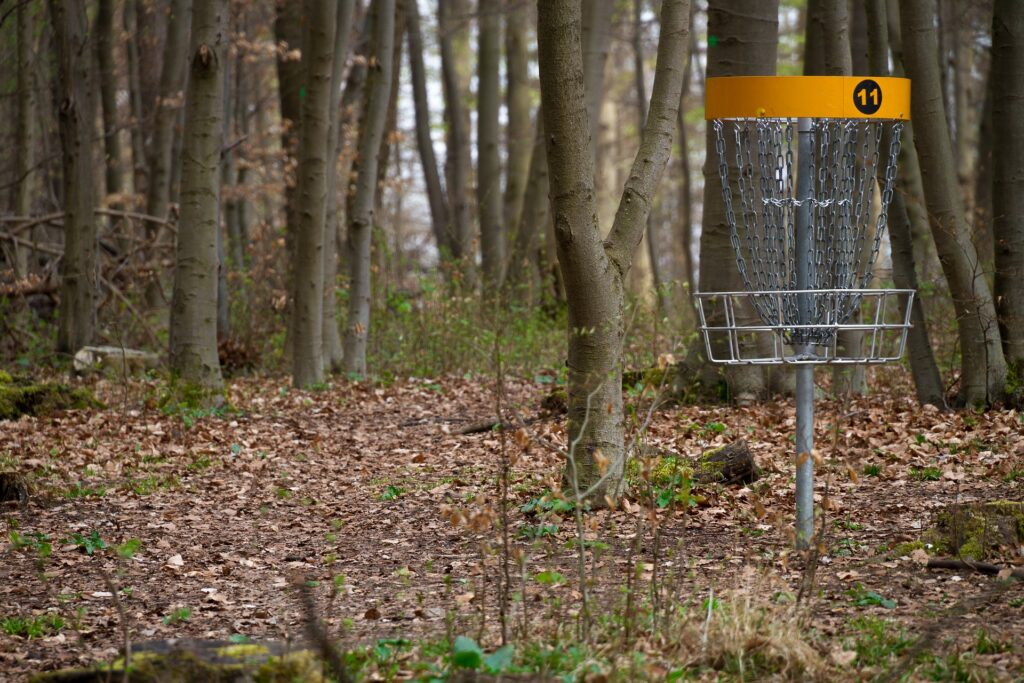 pro disc golf basket