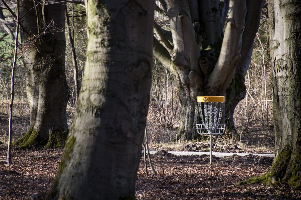 permanent disc golf basket